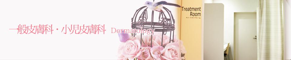 西宮渡辺脳卒中・心臓リハビリテーション病院 皮膚科・美容皮膚科 | 伝染性軟属腫(水イボ)